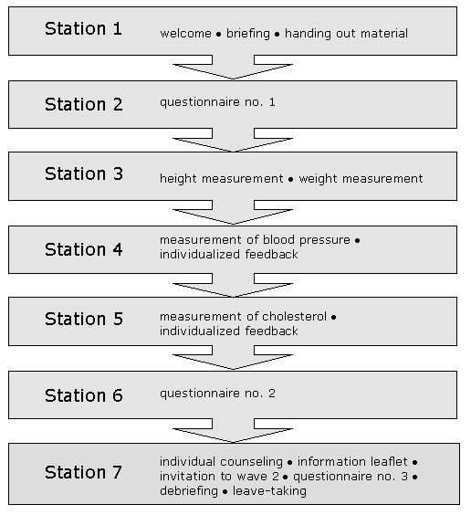 station 1: welcome, briefing, handing out material. station 2: first questionnaire. station 3: height and weight measurement. station 4: measurement of blood pressure, individual feedback. station 5: measurement of cholesterol, individual feedback. station 6: second questionnaire. station 7: individual counseling, information leaflet, invitation to wave2, third questionnaire, debriefing, leave-taking